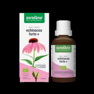 Purasana Echinacea Forte 100ml