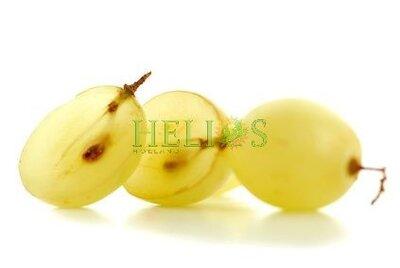 geraffineerde druivenpitolie
