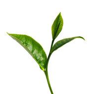 Tea Tree crème